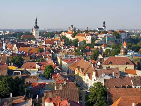 Birds eye view - medieval Tallinn